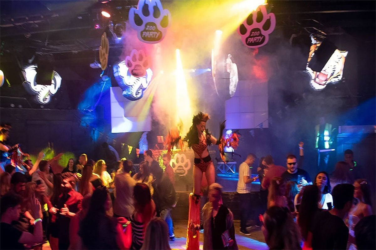 zoo party, safari party theme, jungle theme, jungle hire, safari party, zoo hire, zoo theme, zoo project, zoo project hire, event hire, themed event, inflatable animals, giant zoo animals, large zoo inflatables.