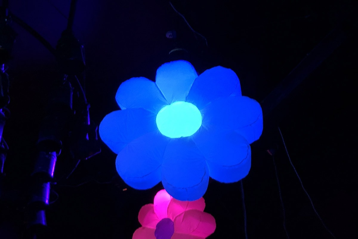 large inflatable flower, giant inflatable flower hire, large inflatable flower, flower power hire, inflatable hire Gloucestershire, giant inflatable hire Cheltenham, inflatable hire Cheltenham, large inflatable hire, Inflatable hire Gloucestershire.
