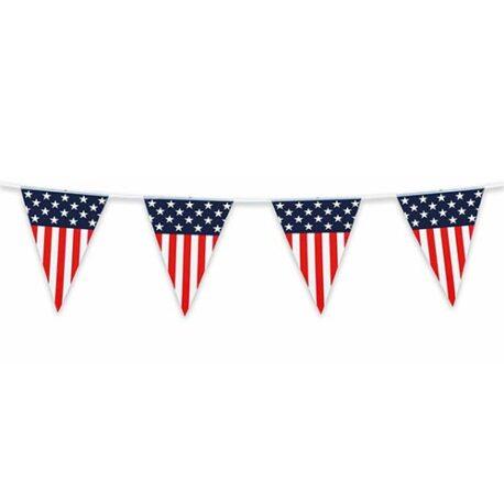 USA American Bunting
